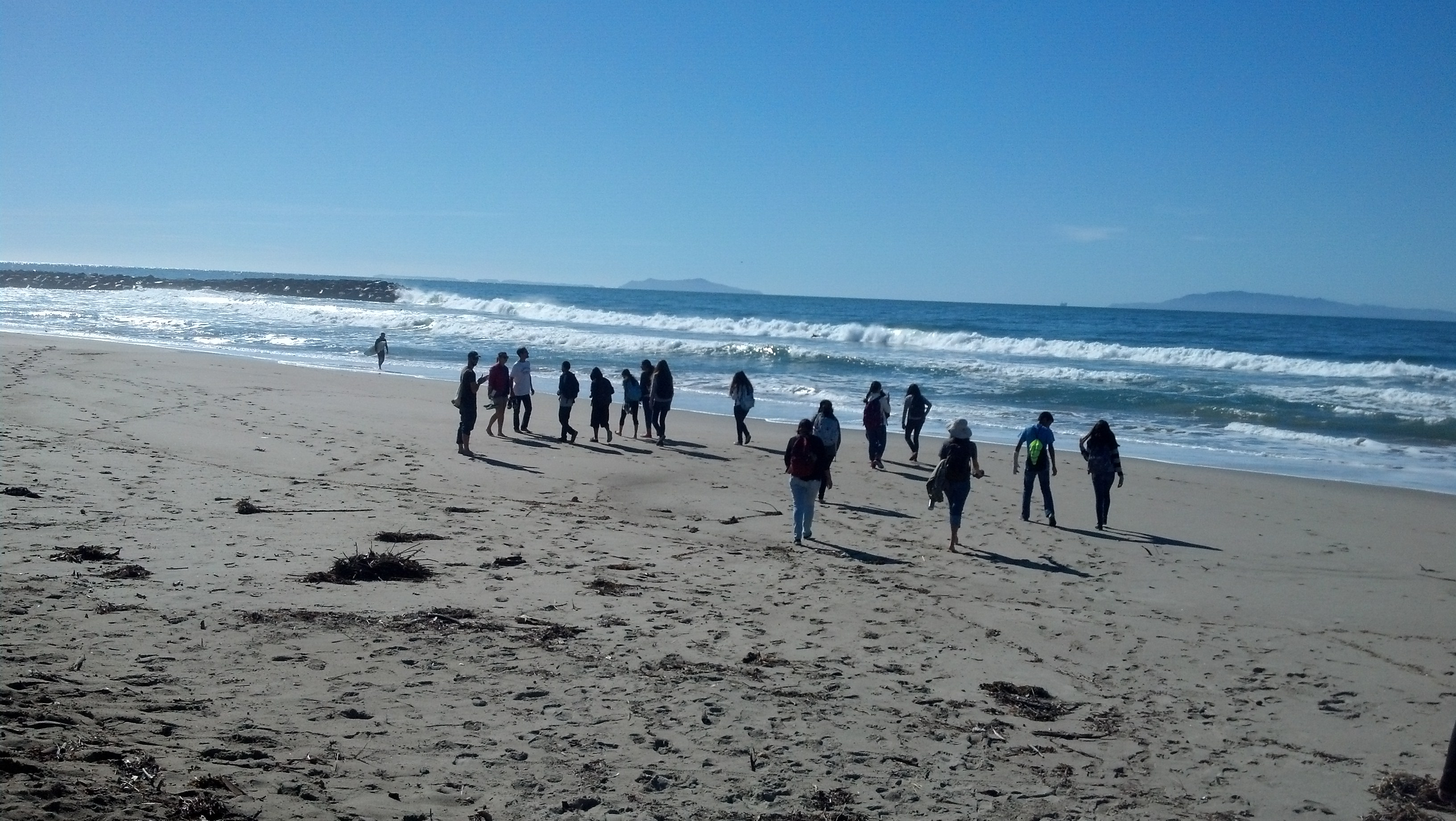 The Students Conducting Sandy Beach Monitoring