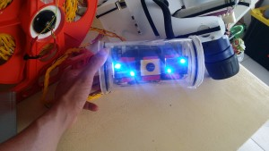 Modified main ROV lights to emit blue light.